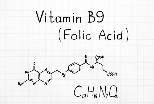 Секреты фолиевой кислоты (Витамин B9)